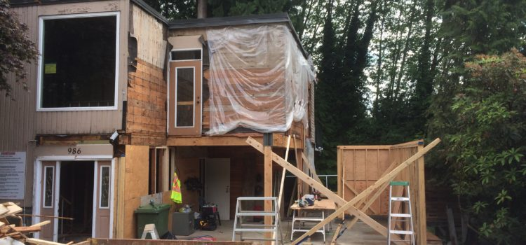 Plywood sheathing – is it worth it?